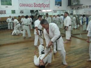 Participantes curso kobudo 30 de junio